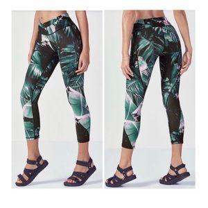 NWT Gia Capri Havana Print Leggings Size 2X